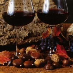 A San Martino ogni mosto diventa vino