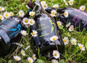 Primavera alla spina, ovvero quali birre primaverili?